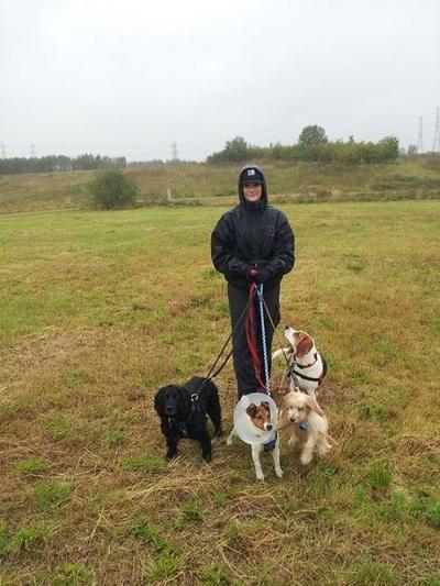 Dog Park Enfield Uk